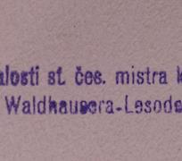 Antonín Waldhauser