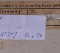 Luboš Synecký