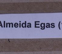 Gilberto Almeida Egas