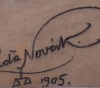 Láďa Novák
