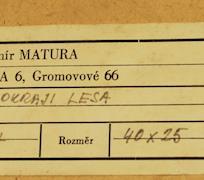 Vladimír Matura