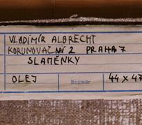 Vladimír Albrecht