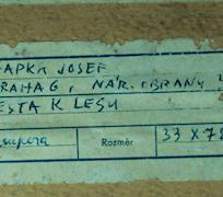 Josef Hapka
