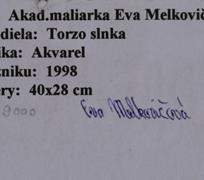 Eva Melkovičová