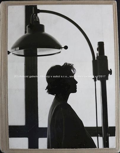 . - Album 59 fotografií z filmu Křik