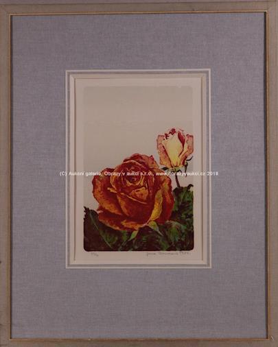 Jana Boudová - Rozkvetlé růže