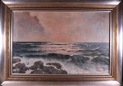 J. Mareš - Racci u pobřeží