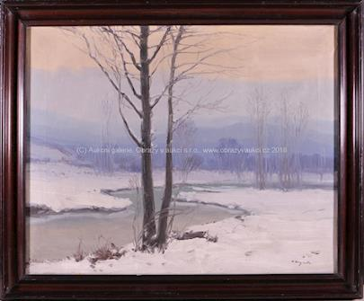 Antonín Augusta - Zimní nálada