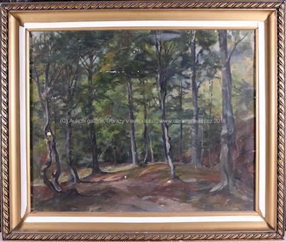 Karel Hofman - V lese