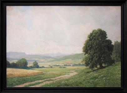 Josef Holub - Cesta v polích