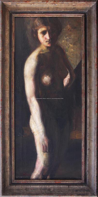 Ján Mudroch - Akt ženy