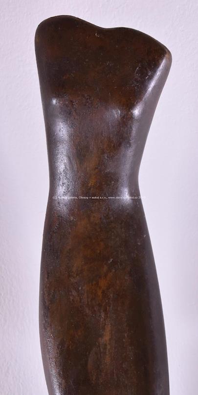 Alexander Porfyrovych Archipenko - Fidura- torso
