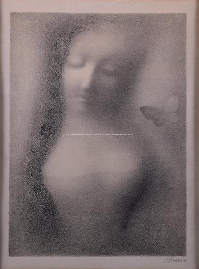 Ludmila Jiřincová - Dívka s motýlem