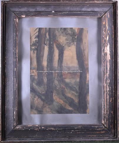 signatura nečitelná - Mezi stromy