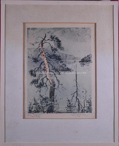 Karel Stehlík - Borovice u jezera