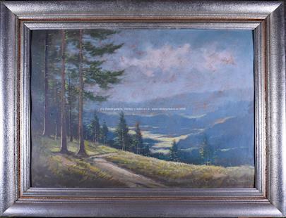 J. Kameníček - Výhled do kraje