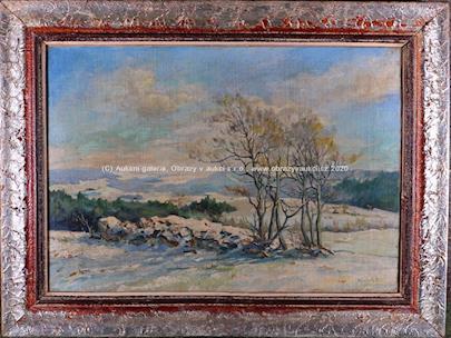 Kubík - Zimní den