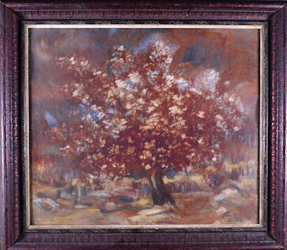 Bernard Daníček - Kvetoucí jabloň