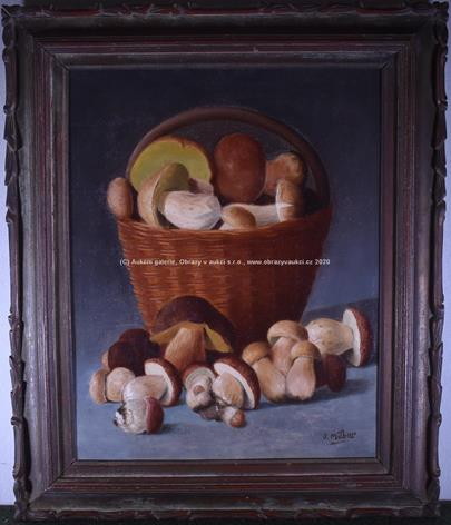 Vlastimil Miller - Košík hub