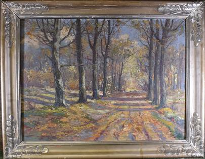 signatura nečitelná - Lesní cesta