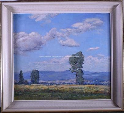 Jindřich Havlíček - Výhled do kraje