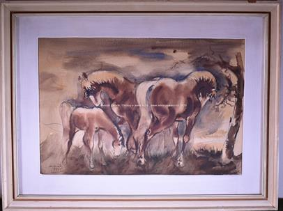 Setvák - Koně na pastvě
