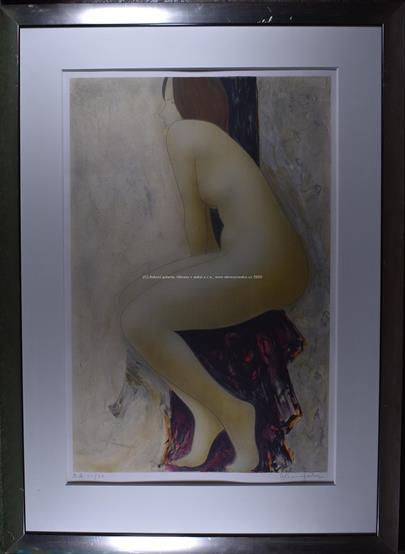 David Baumfoorth - Dívčí křivky