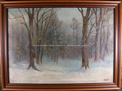 Moravec - Zima v lese