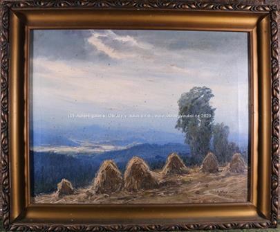 Antonín Augusta - Žně v horách