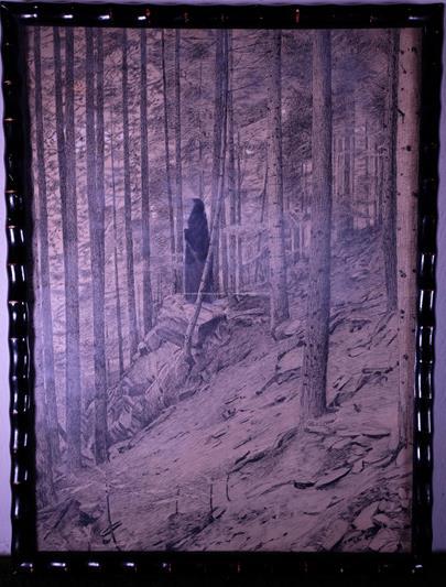 František Kaván - Ticho lesa