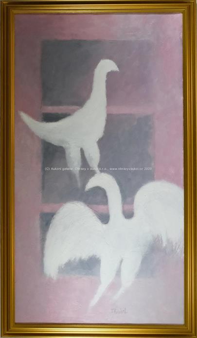 Vladimír Komárek - Ptáci