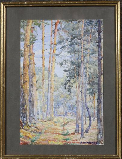 Procházka - V lese