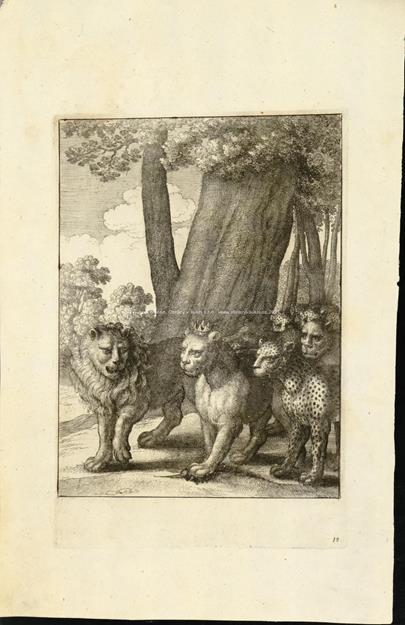 Václav Hollar - O lvu a myši