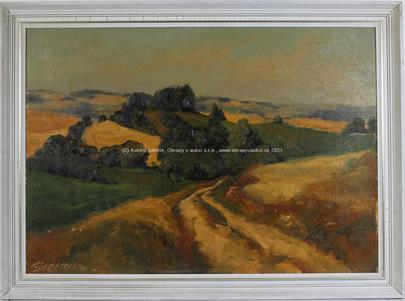 E. Zimmermann - Polní cestou
