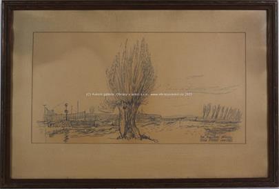 Vilém  Plocek - Vzrostlý strom
