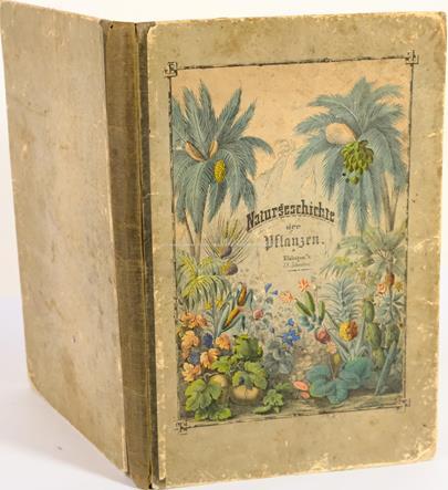 G. H. von Schubert - Naturgeschichte des Pflanzenreichs in Bildern