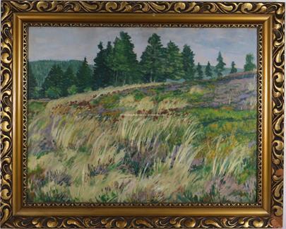 Antonín Hudeček - Luka u lesů