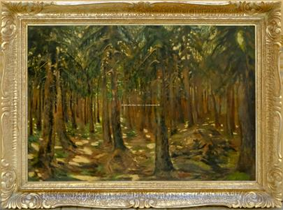 Antonín Hudeček - V hlubokém lese