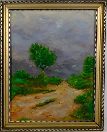 Šnábl - Úvoz před bouří