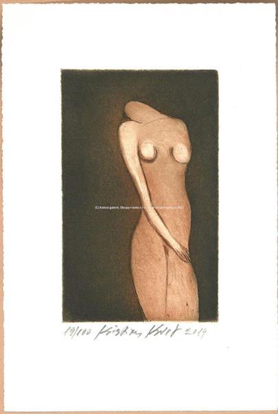 Kristian Kodet - Ženské torzo