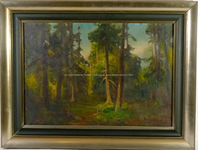 Arkadi Solovjev - Lesní říše