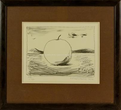 Kamil Lhoták - Reklamní jablko