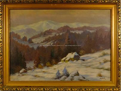 Viktor Jan Rychlík - Samota v horách