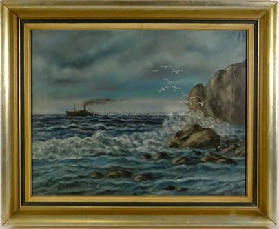 M. Dreyer - Racci nad mořskými skalisky