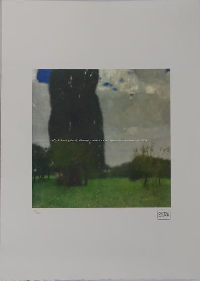 Gustav Klimt - Louka se stromy