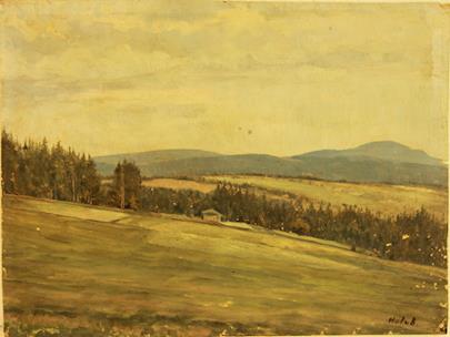Josef Holub - Pastviny u lesů